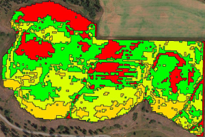 A management zone prescription map derived from data acquired by drones